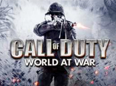 Activision – Call of Duty: World At War HUB (2010)